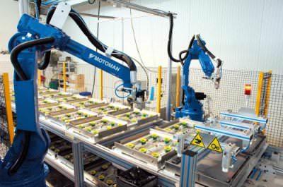 Image realization Plastic decor and wooden plate assembly line CTF Automazioni Srl